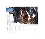 Equino Media Kids kalender van - 402410 - 2