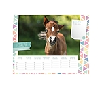 Equino Media Kids kalender van - 402410 - 3