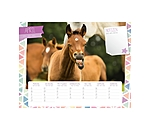 Equino Media Kids kalender van - 402410 - 5